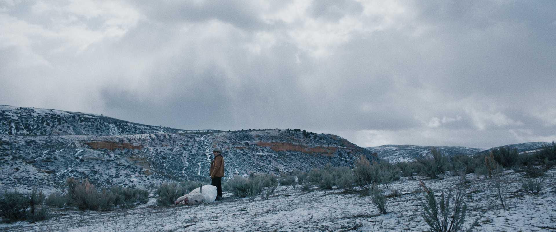 Risultati immagini per wind river 2018 cinematography
